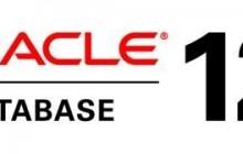 Oracle数据库碎片级别的数据恢复